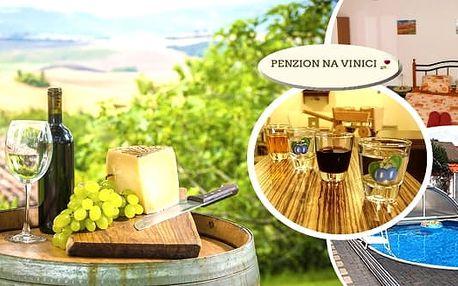Jarní balíček vinařského pobytu pro dva s polopenzí ve stylu moravských specialit a bohatým programem vsrdci jižní Moravy v penzionu Na Vinici. Užijte si neomezenou konzumaci vína, ochutnávku moravských vín, domácích pálenek a likérů v překrásném prostře