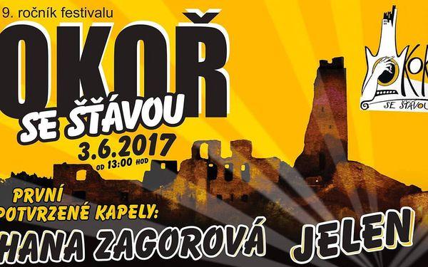 Lístek na hudební festival Okoř se šťávou 2017