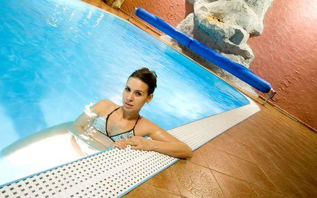 Wellness & Congress hotel Dvořák Tábor **** s procedurami