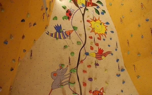 Vstup pro dva nebo neomezená permanentka na lezeckou stěnu na prázdniny3