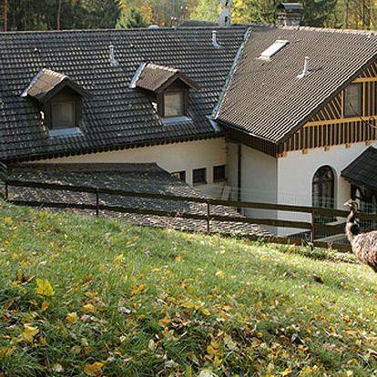Westernová atmosféra na ranči U Jelena nedaleko Brna se snídaněmi