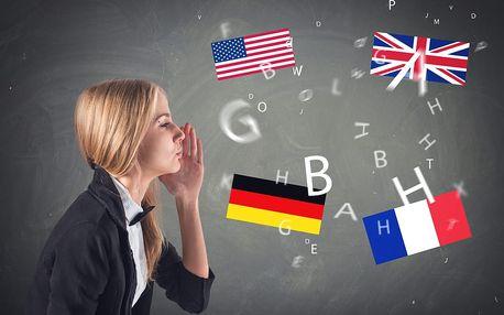 10denní intenzivní jazykové kurzy v Plzni: aj, nj, ij, fj