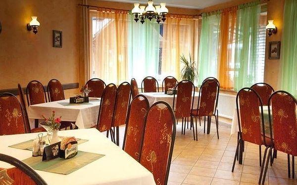 Hotel Bohemia - Františkovy Lázně