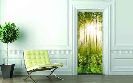 1Wall fototapeta Prosvětlený les 95x210 cm