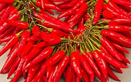 200 semínek pikantních chilli papriček