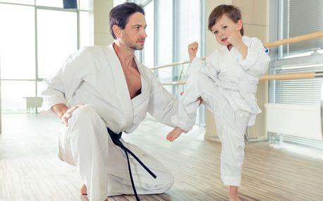 Tréninky Taekwondo WTF od 6 let