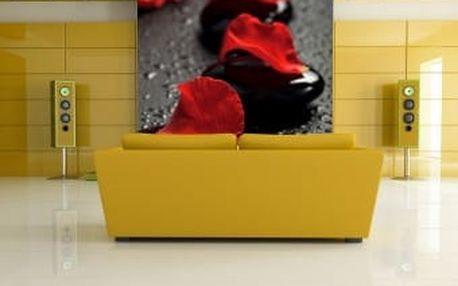 Fototapeta Růže s kameny