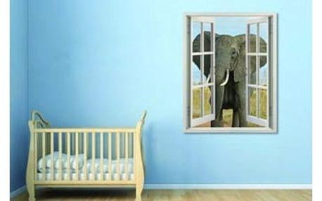 Živá dekorace na Okno - slon