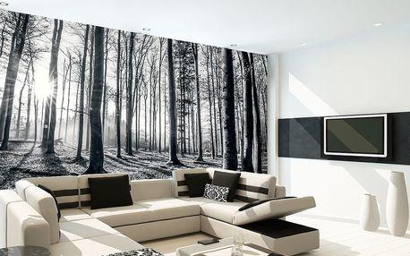1Wall 1Wall fototapeta Černobílý les 315x232 cm
