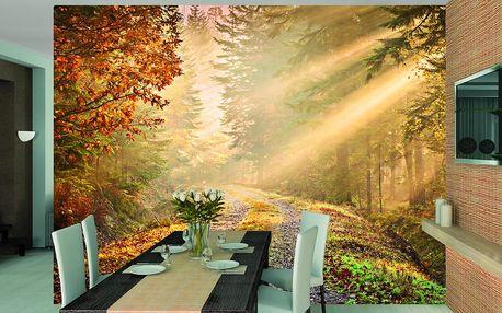 1Wall 1Wall fototapeta Podzimní les 315x232 cm