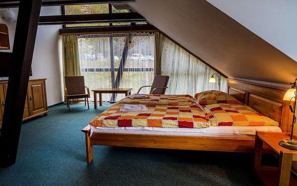 Hotel Trosky