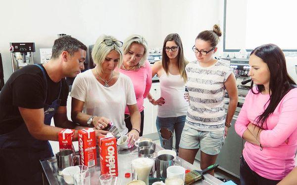 Kurz kávy - Coffee professional II.2