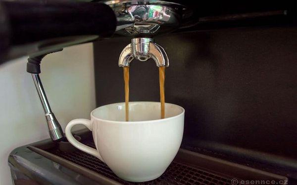 Kurz kávy - Coffee professional II.5