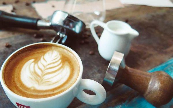 Kurz kávy - Coffee professional II.