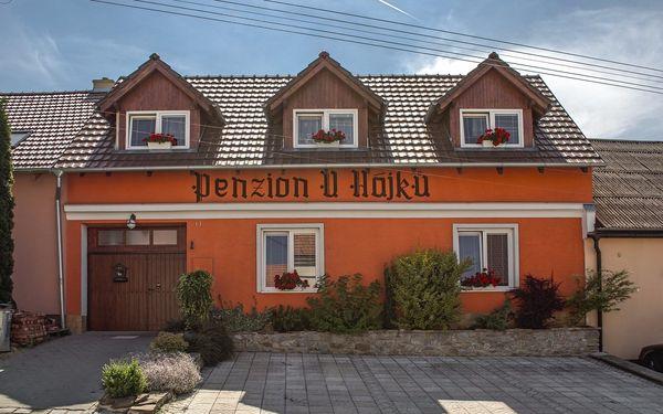 Penzion U Hájků