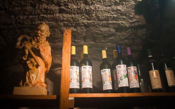 Vinařský kurz s ochutnávkou vín4