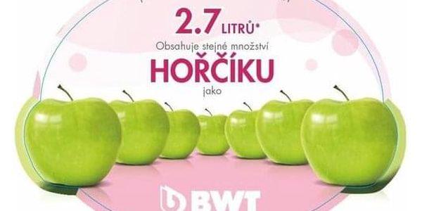 BWT náhradní filtry 3 ks3