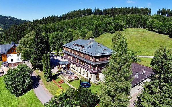 Alpský Hotel