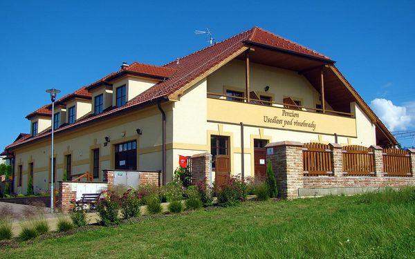 Penzion Usedlost pod vinohrady