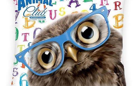 Halantex Polštářek Sova v brýlích, 40 x 40 cm