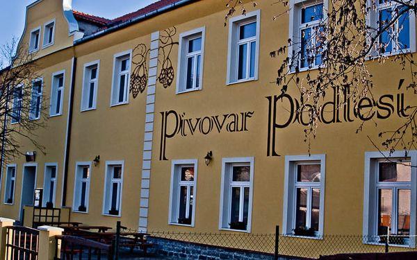 Penzion Pivovar Podlesí
