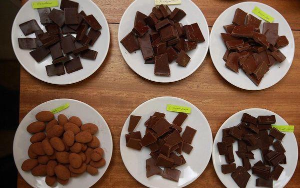Degustace čokolády2