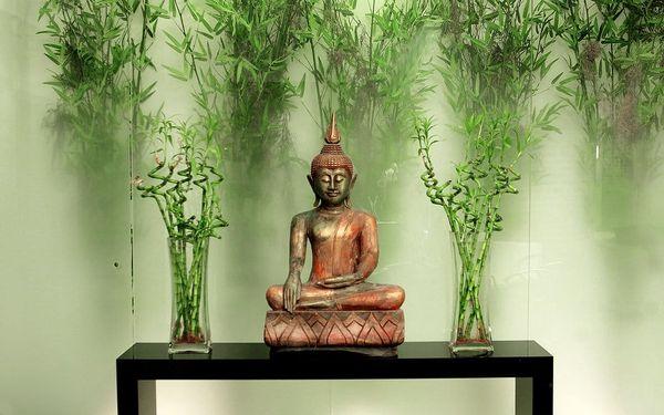 Thajská masáž pro dva5