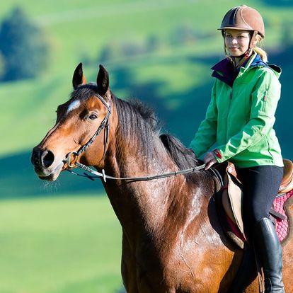 Jízdy na koni i hiporehabilitace na minifarmě