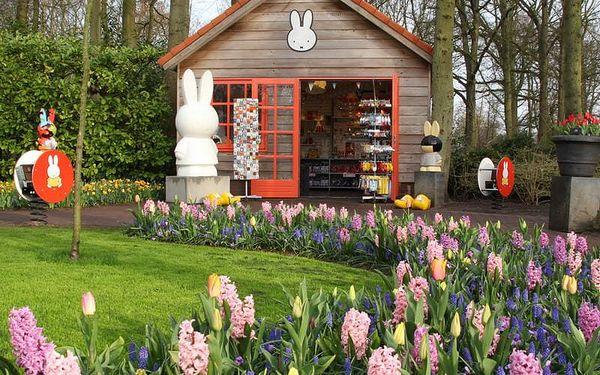 Rozkvetlý Keukenhof (květinové korzo) a Amsterdam, autobusem, bez stravy4