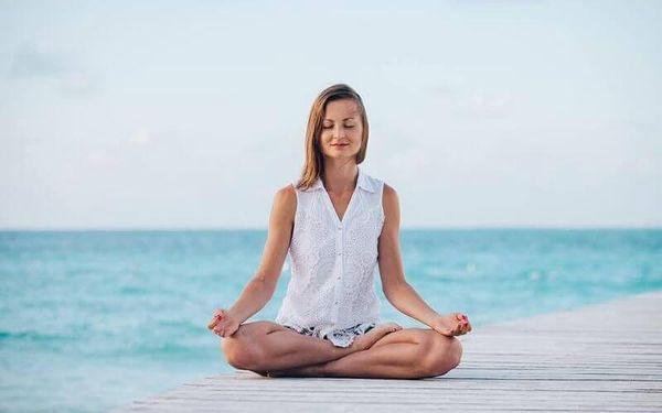Online kurz: Umění Meditace2
