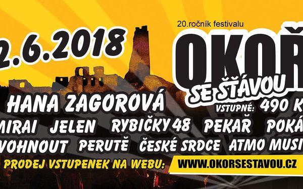 Vstupenka na 20. ročník open-air festivalu v romantickém podhradí Okoře3
