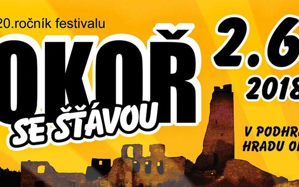 Vstup na hudební festival Okoř se šťávou 2018
