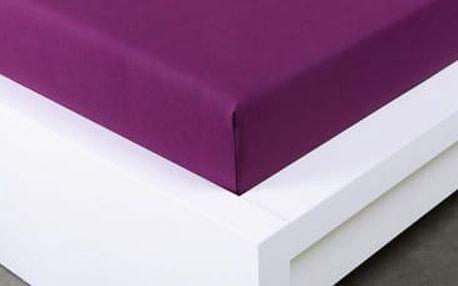 XPOSE ® Jersey prostěradlo Exclusive dvoulůžko - švestková 140x200 cm