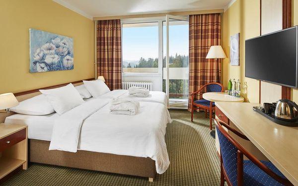 Dvoulůžkový pokoj Superior s manželskou postelí a bez balkonu5