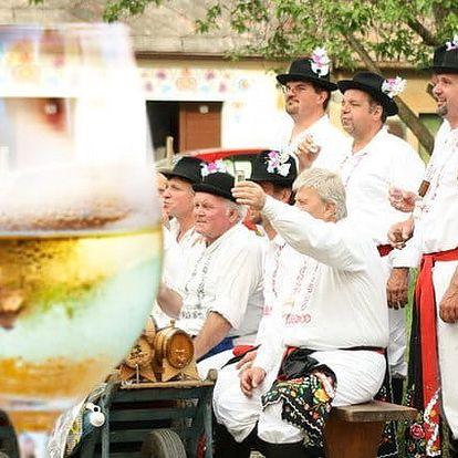 3 až 5denní vinařský pobyt s degustací pro 2 ve Vinném sklepě Prušánky na Moravě