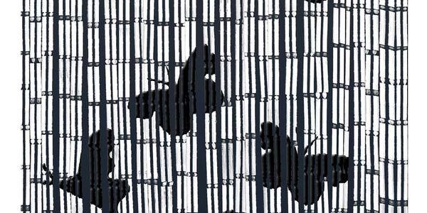 Bambusový závěs Kočka a motýli , 90x200 cm, WENKO2