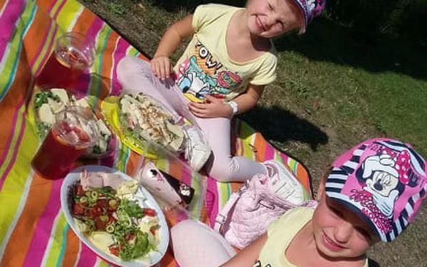 Piknik: sandwiche, saláty, grilovaný kuřecí gyros, víno i domácí limonády3