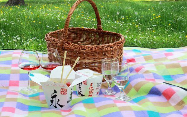 Piknik: sandwiche, saláty, grilovaný kuřecí gyros, víno i domácí limonády4