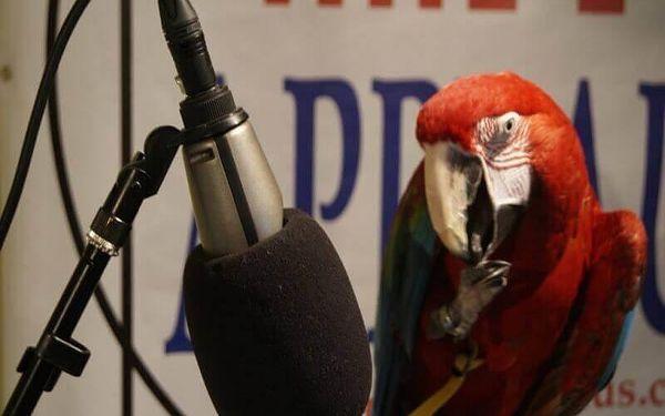 Moderátorský kurz v rádiu2
