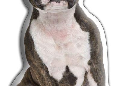 Polštářek Adorable Cushions Stafordšírský bulteriér