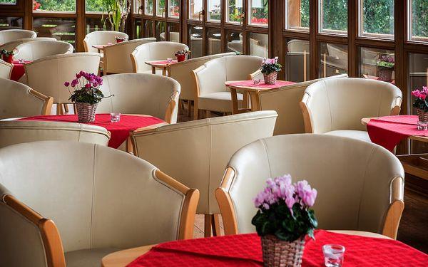 Pobyt se vstupem do SPA by L'Occitane v Hotelu Lesná, Vysoké Tatry, vlastní doprava, polopenze4