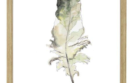 Hübsch Rámeček s obrázkem Feather Nature, šedá barva, sklo, dřevo