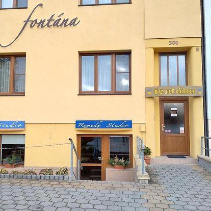 Střední Čechy: Pension Fontána
