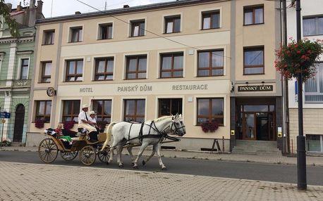 Plzeňsko: Hotel Panský dům - Blovice