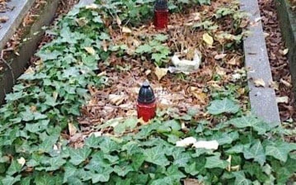 Nadstandardní služba: úklid hrobu jednorázově, ale i 4× za rok3