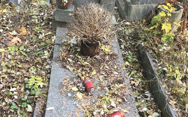 Nadstandardní služba: úklid hrobu jednorázově, ale i 4× za rok4