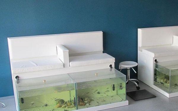 Netradiční péče: Rybí pedikúra Garra Rufa4