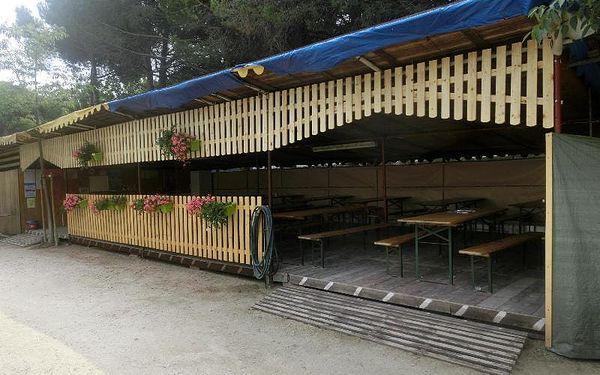 Kemp Cesenatico - stany, Emilia Romagna, autobusem, plná penze2