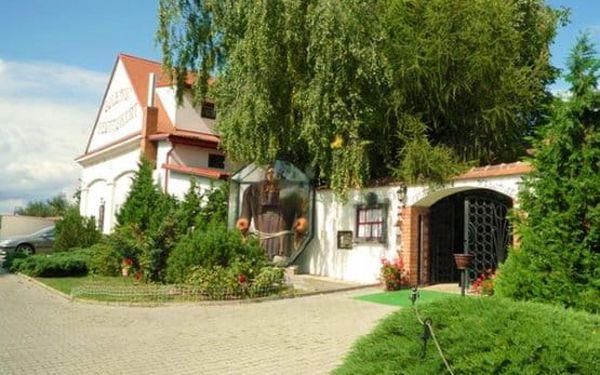Rudolfovo plato plné dobrot pro 2 opravdové jedlíky v Golemově restaurantu v Březiněvsi5