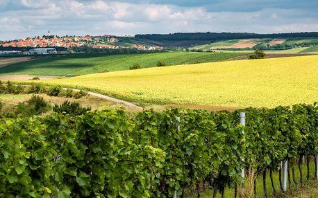Pobyt na Kraví hoře: polopenze a ochutnávka vín